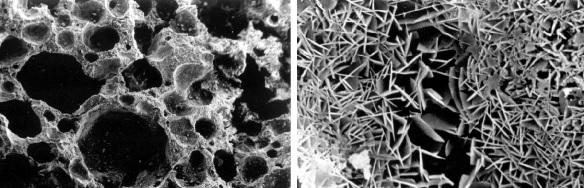 cấu trúc bề mặt bê tông rỗng được làm đặc bởi hóa chất tăng cứng bê tông