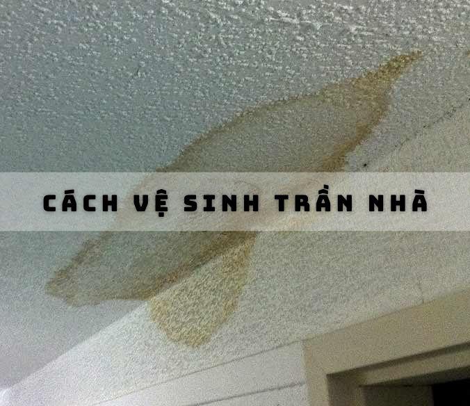 cach-ve-sinh-tran-nha